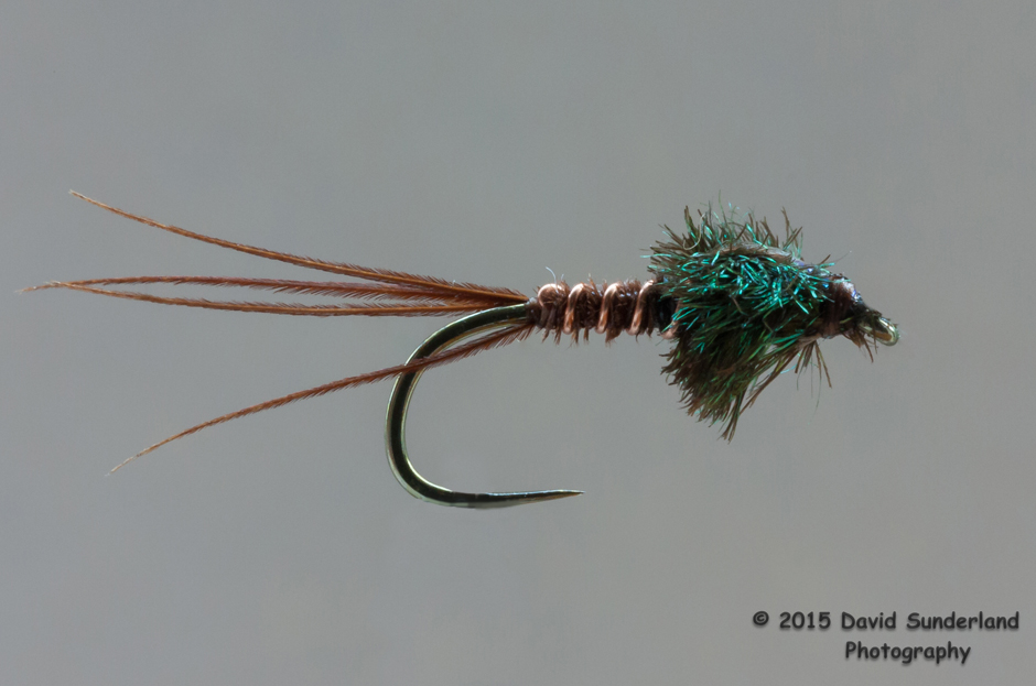 A pheasant tail nymph